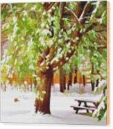 Park In Winter Wood Print