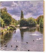 Park Lake Wood Print
