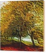 Park Landscape Wood Print