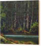 Park Refuge Wood Print