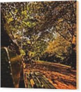 Park Side  Wood Print