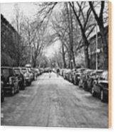 Park Slope Street Light Wood Print