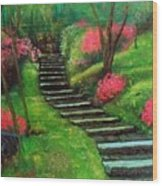 Park Steps Wood Print