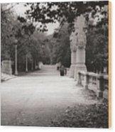 Park Walk In Fall Wood Print