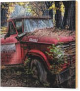 Parked On A Country Road Oil Painting Wood Print