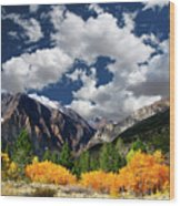 Parker Canyon Fall Colors California's High Sierra Wood Print by Bill Wight CA