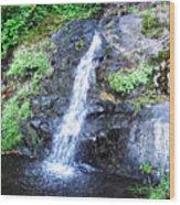 Parker Creek Falls Wood Print