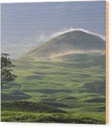Parker Ranch Wood Print