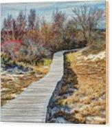Parker River Nwr Boardwalk Wood Print