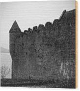 Parkes Castle County Leitrim Ireland Wood Print