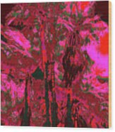 Parking Lot Palms 1 12 Wood Print
