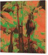 Parking Lot Palms 1 6 Wood Print