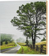 Parkway Mist Wood Print