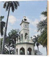 Parque Central Ahuachapan El Salvador Wood Print