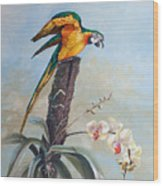 Parrot And Orchid Wood Print