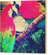 Parrot Couple Wood Print