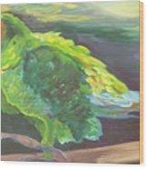Parrot Posing Wood Print