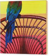 Parrot Sitting On Chair Wood Print by Garry Gay
