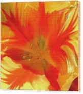 Parrot Tulips Wood Print