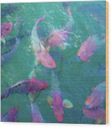 Parrotfish Of The Keys Wood Print