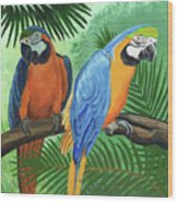 Parrots In Light And Shade Wood Print