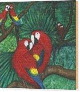 Parrots Preening Wood Print