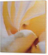 Particle - Plant 17 Wood Print