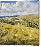Parting Creek Regional Reserve Tasmania Wood Print
