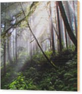 Parting Of The Mist Wood Print