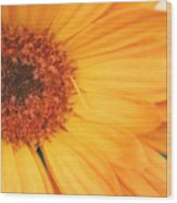 Partly Sunny Wood Print