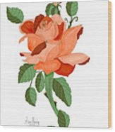 Party Colored Rose Wood Print