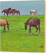 Paso Fino Horses Graze By Seaside Wood Print
