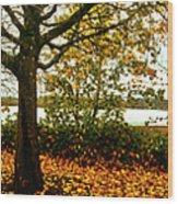 Passage Through The Fall Wood Print
