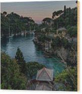 Nervi Coast With Train - La Scogliera Di Nervi E Il Suo Treno Wood Print