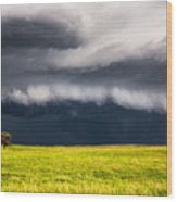 Passing By - Storm Passes By Lone Tree In Western Nebraska Wood Print