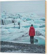 Passing Icebergs  Wood Print