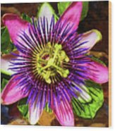 Passion Flower Wood Print by Mariola Bitner