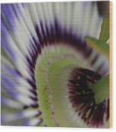 Passion Flower Wood Print