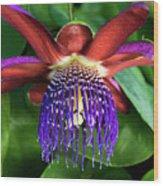 Passion Flower Ver. 13 Wood Print