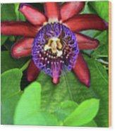 Passion Flower Ver. 15 Wood Print