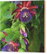 Passion Flower Ver. 16 Wood Print