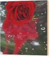 Passion In The Rain Wood Print