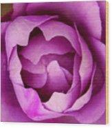 Passionate Purple Wood Print