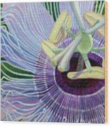 Passionflower Vine Wood Print