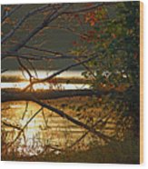 Past Consciousness Wood Print