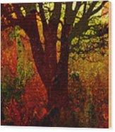 Past Life Wood Print