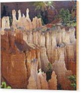 Pastel Bryce Wood Print