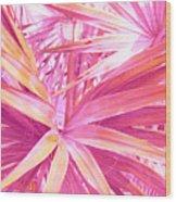 Pastel Dream In Pink Wood Print