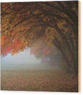 Pastel Wood Print