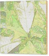 Pastel Green Nature Wood Print